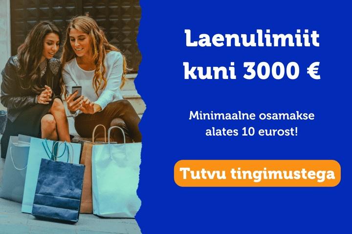 3000 eurot pakkumine